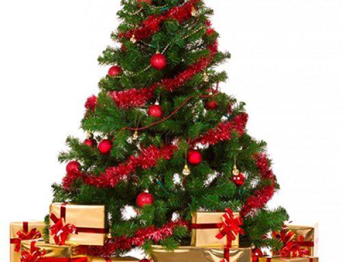 Advent Devotional – December 20